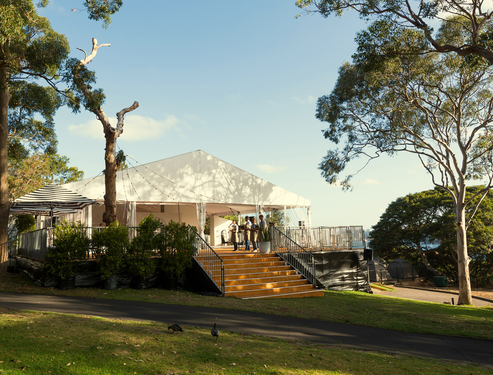 TeamEvent_Taronga_Marquee_03